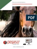 Presentacion Sistema Pegaso PDF 2 - 2