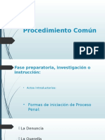 Expo Procedimiento Común.pptx