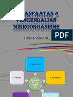 13. Pemanfaatan & Pengendalian Mikroorganisme
