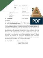 PROYECTO HORMIGAS DIRECTORES.docx