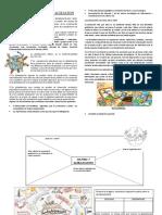 Cultura y Globalización.docx