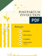 Postpartum Involution