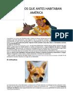 LOS PERROS QUE ANTES HABITABAN AMÉRICA.docx