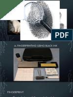 Fingerprint Report
