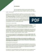 Democracia y derechos humanos.docx