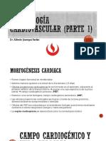 Desarrollo Cardiovascular(1)(1)