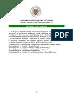 30 2013-11-06 Líneas de Investigación(1)