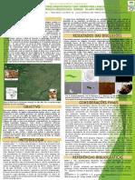 A Análise de Cálculos Dentários Arqueológicos Em Mato Grosso Do Sul – Brasil