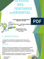 8. RIESGOS DEL  INVENTARIO AMBIENTAL.pptx