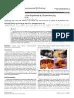 pathology-of-fatal-multiorgan-impairment-in-a-rottweiler-dog-2161-0681-1000249.pdf