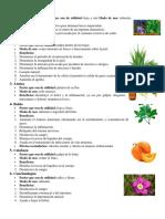 Plantas medicinales 50.docx