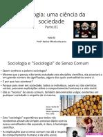 Sociologia Uma Ciência Da Sociedade