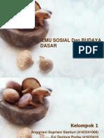 ILMU SOSIAL Dan BUDAYA DASAR.pptx