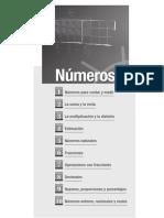 indice-numeros (1).pdf