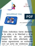 Seguridad Vial 1ro 2017