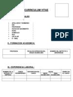 MODELO DE CURRICULUM VITAE ODPE.docx