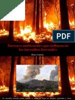 Henry Camino - Factores Ambientales Que Influyen en Los Incendios Forestales