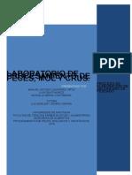 INFORME DE PECES SALCHICHA.docx