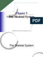 skeletal sistem