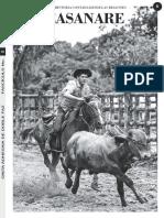 6. Casanare.pdf