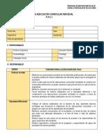 FORMATO PACI OFICIAL.docx