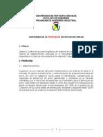 OPCION DE GRADO
