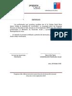 Certificado Participacion Programa