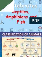 Reptiles, Amphibians & Fish Y3 (Wecompress.com)