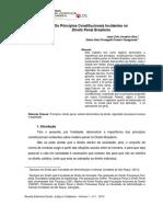 Princípios Constitucionais Incidentes no Direito Penal.pdf