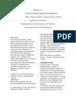Informe Aerobios Misofilos  SPC Y PDA Microbioligia Agroiondustrial