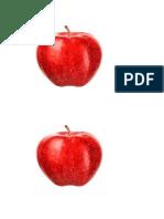 frutos.pdf