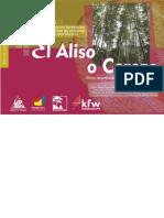 SP ALISO.docx