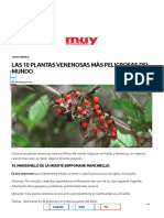 Las 10 Plantas Venenosas Más Peligrosas Del Mundo