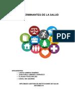 Det. de Salud Rev 2017.docx