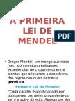 Biologia PPT - A primeira Lei de Mendel