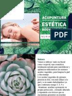 Acupuntura I. Fundamentos de Bioenergetica. Carlos Nogueira (Libro Completo)