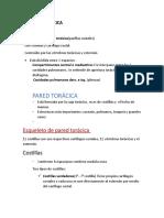 CAVIDAD TORÁCICA.docx