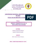 PAPILOMATOSIS.docx
