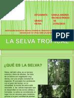 selva tropical camila.pptx