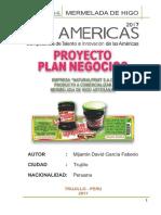TIC AMERICAS  2020-12.docx