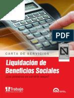 Cartas Servicios Liquidaciones (1)