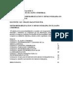 MODULO 3 NEUROREHABILITACION Y MUSICOTERAPIA EN EL DAÑO CEREBRAL.pdf