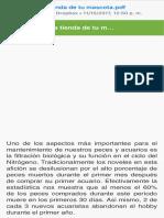 ciclo del nitrógeno.pdf