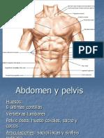 Abdomen y pelvis básico.ppt