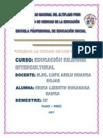 Juliaca PDF
