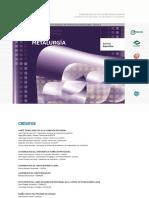 METALURGIA-Programa Metalurgia.pdf