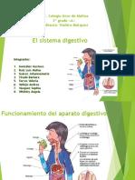 El sistema digestivo.pptx