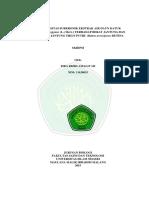 11620035.pdf