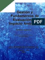 gestion y fundamente de la evaluacion ambiental (guillermo espinoza).pdf