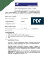 1  Acta de Reunion del CSST cieec.docx